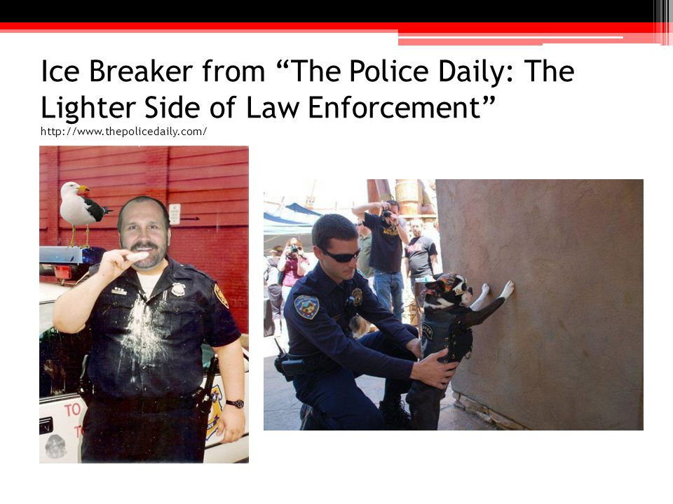 Ice Breaker from The Police Daily: The Lighter Side of Law Enforcement http://www.thepolicedaily.com/