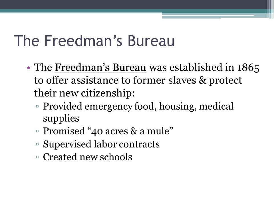 The Freedman's Bureau The Freedman's Bureau was established in 1865 to offer assistance to former slaves & protect their new citizenship: