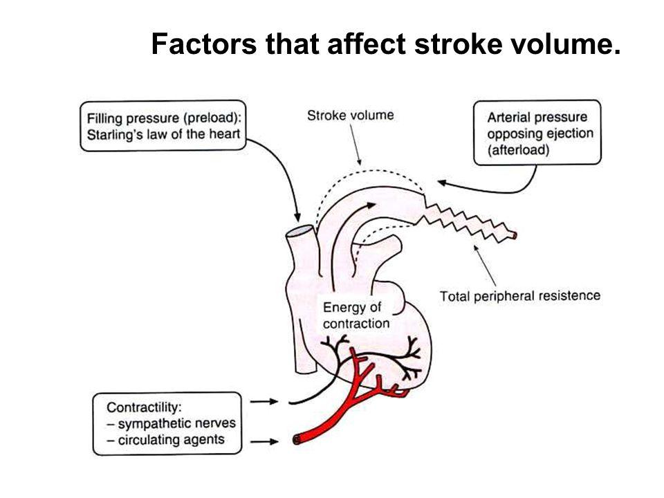 Factors that affect stroke volume.