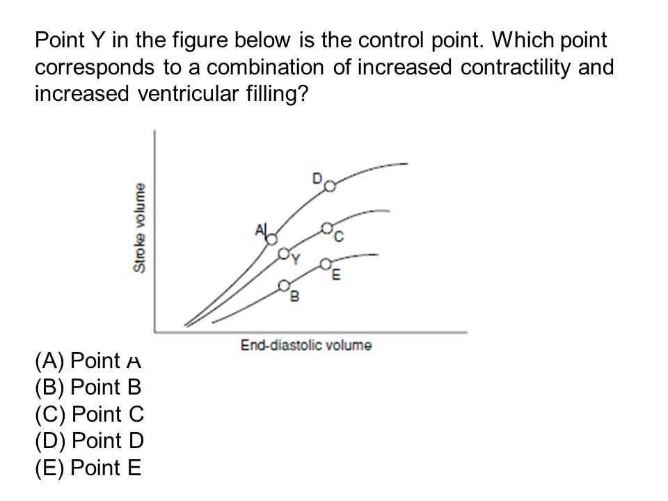 Point Y in the figure below is the control point. Which point