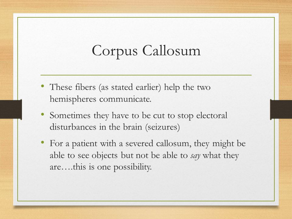 Corpus Callosum These fibers (as stated earlier) help the two hemispheres communicate.