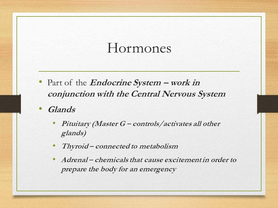 Hormones Part of the Endocrine System – work in conjunction with the Central Nervous System. Glands.