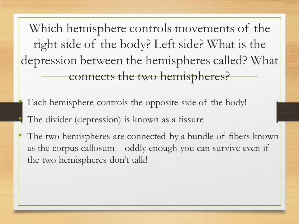 Which hemisphere controls movements of the right side of the body