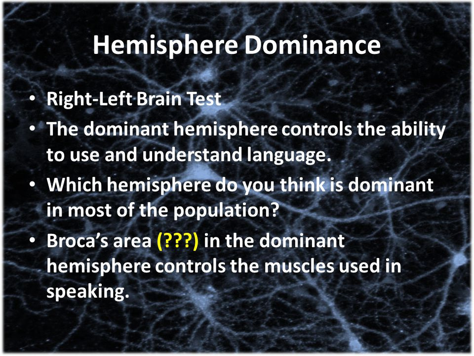 Hemisphere Dominance Right-Left Brain Test