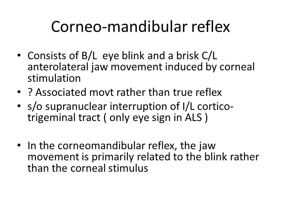Corneo-mandibular reflex