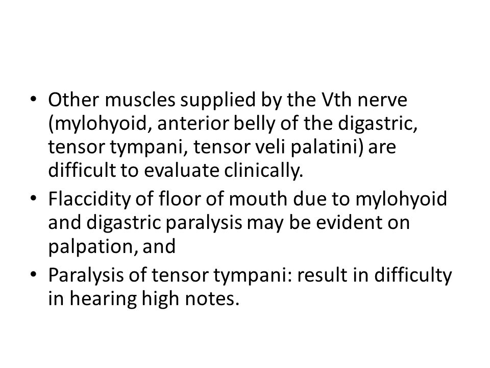 Other muscles supplied by the Vth nerve (mylohyoid, anterior belly of the digastric, tensor tympani, tensor veli palatini) are difficult to evaluate clinically.