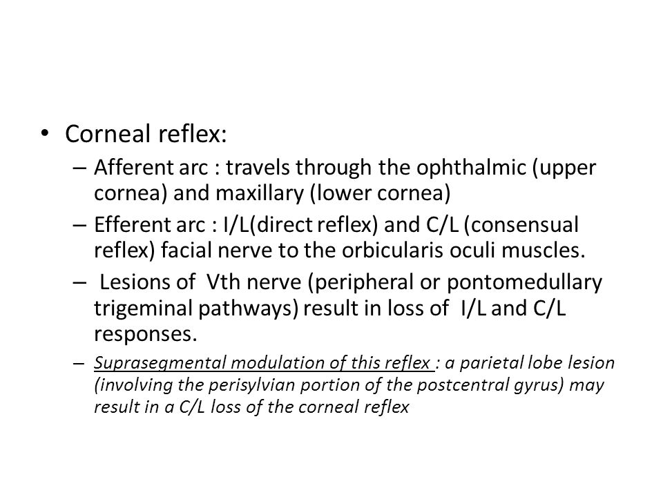 Corneal reflex: Afferent arc : travels through the ophthalmic (upper cornea) and maxillary (lower cornea)