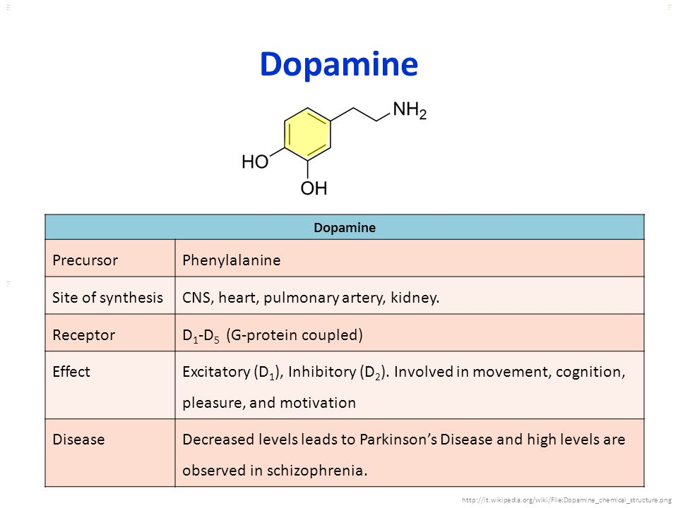 Dopamine Precursor Phenylalanine Site of synthesis