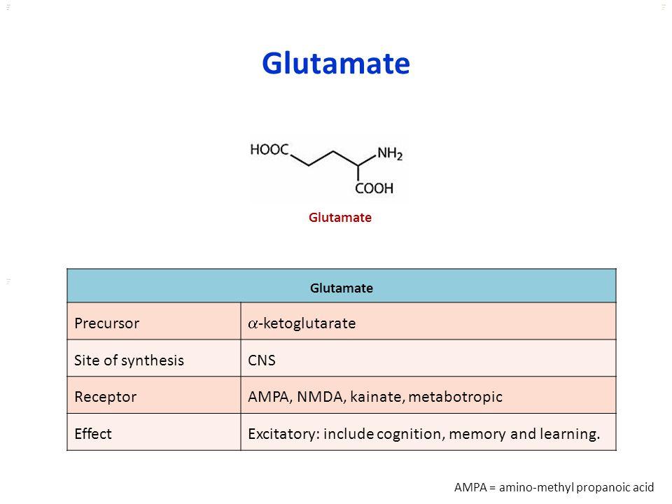 Glutamate Precursor -ketoglutarate Site of synthesis CNS Receptor