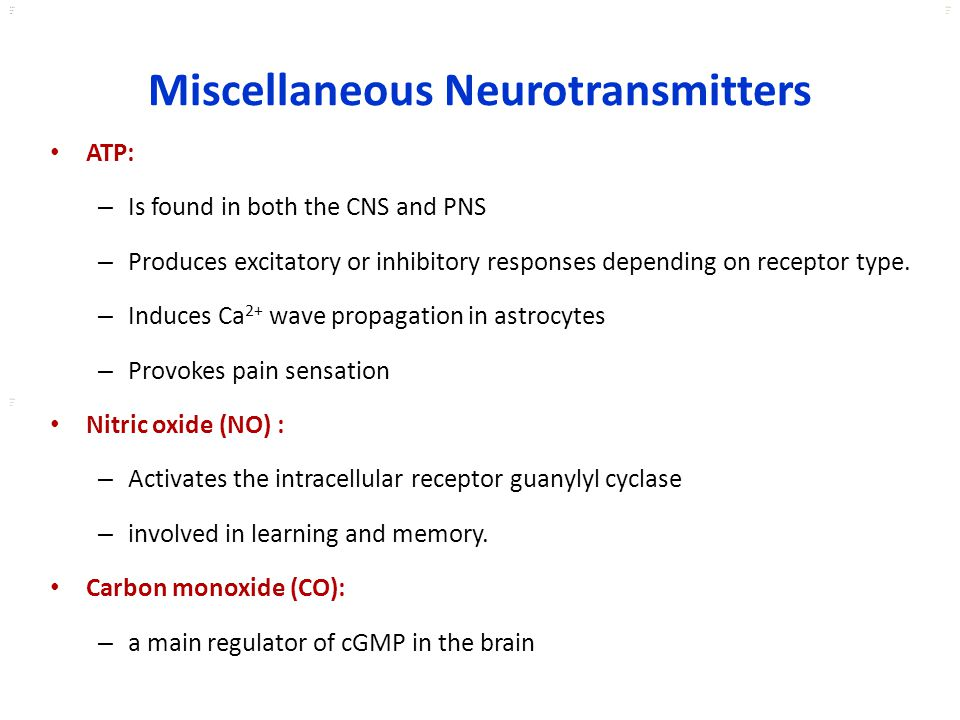 Miscellaneous Neurotransmitters