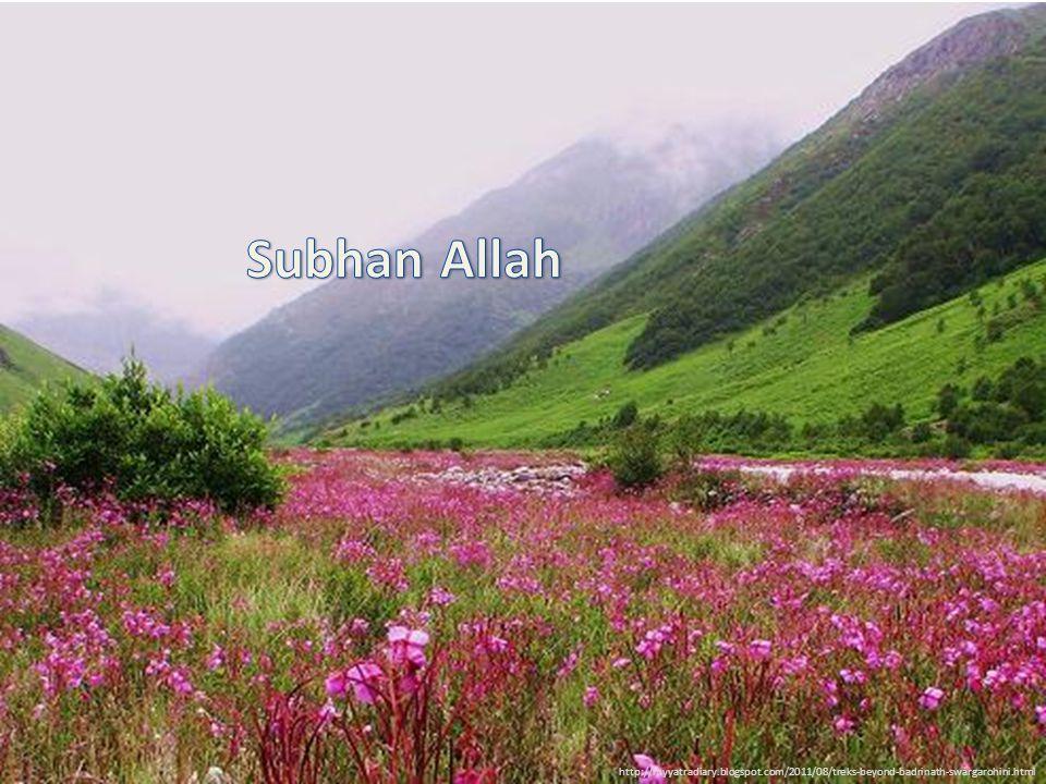 Subhan Allah http://myyatradiary.blogspot.com/2011/08/treks-beyond-badrinath-swargarohini.html