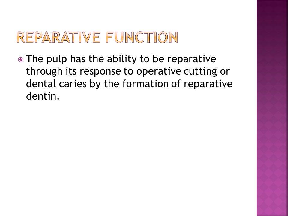 Reparative function