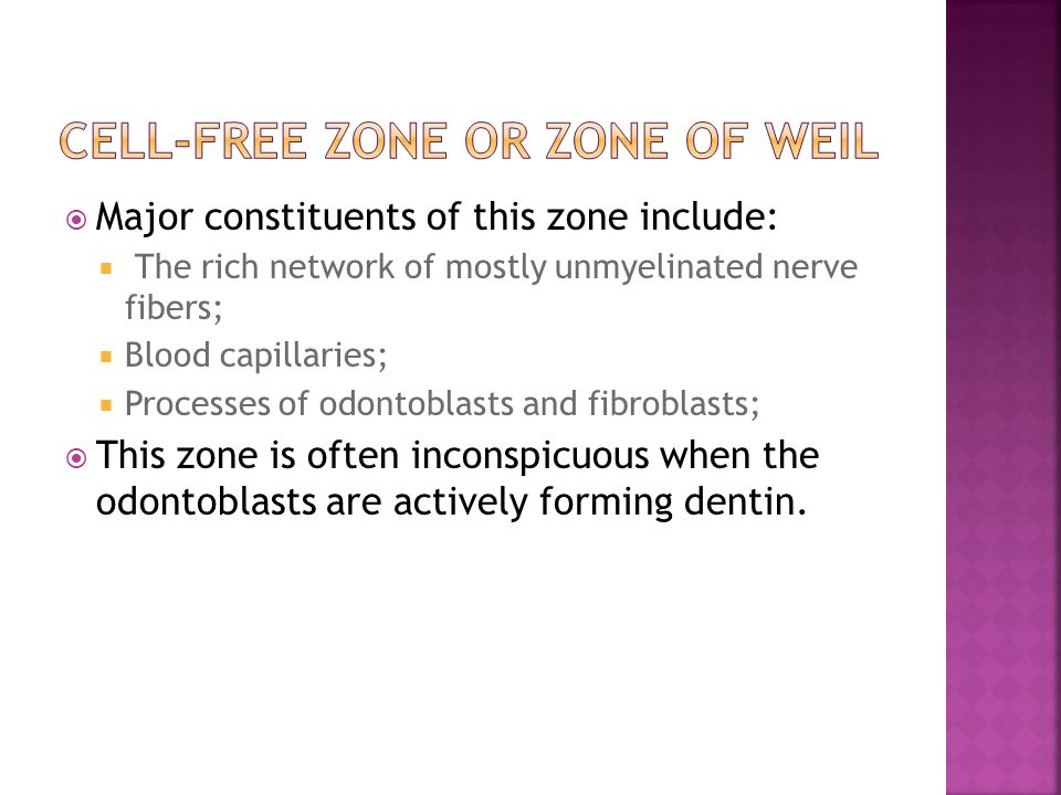Cell-free zone or zone of Weil