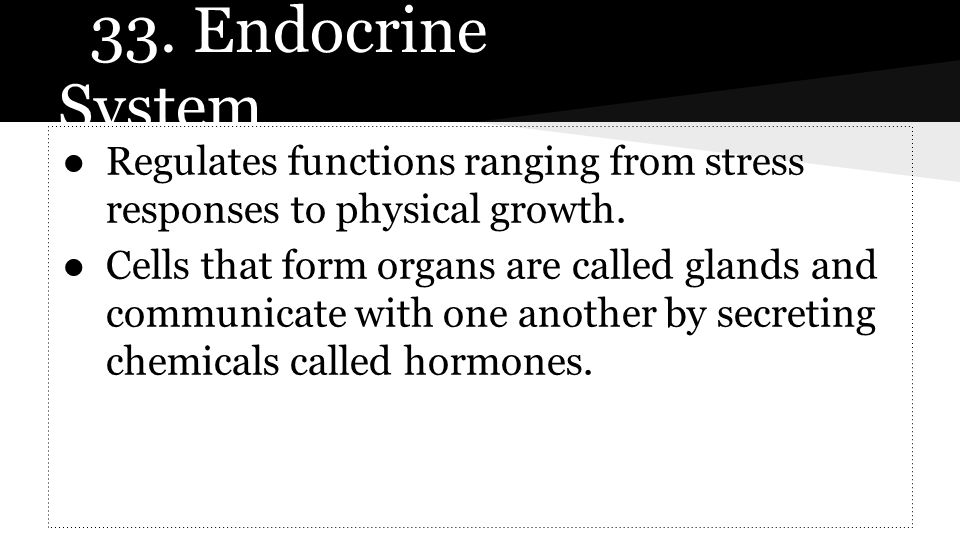 33. Endocrine System Regulates functions ranging from stress responses to physical growth.