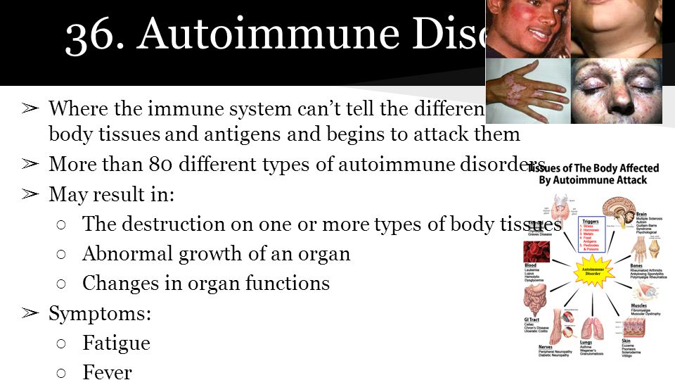 36. Autoimmune Disorder Where the immune system can't tell the difference between healthy body tissues and antigens and begins to attack them.