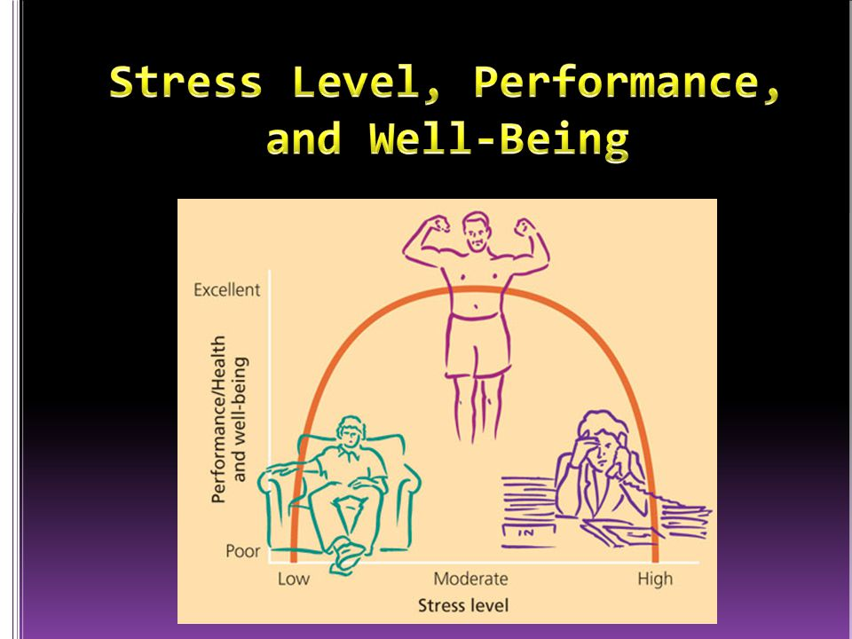 Stress Level, Performance, and Well-Being