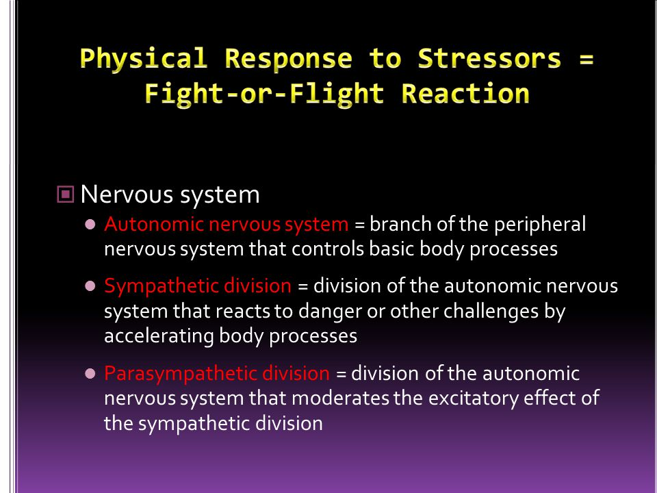 Physical Response to Stressors = Fight-or-Flight Reaction
