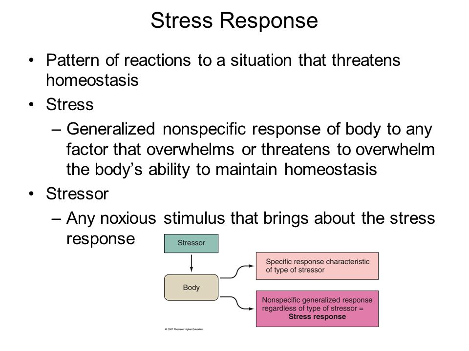 Stress Response Pattern of reactions to a situation that threatens homeostasis. Stress.