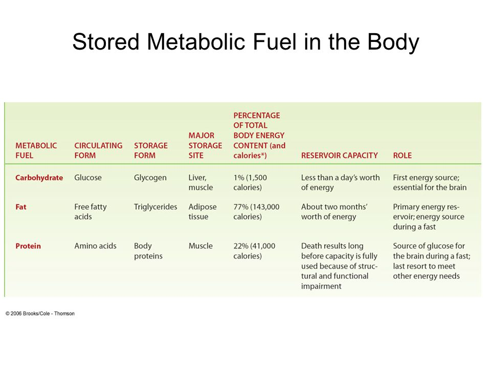 Stored Metabolic Fuel in the Body