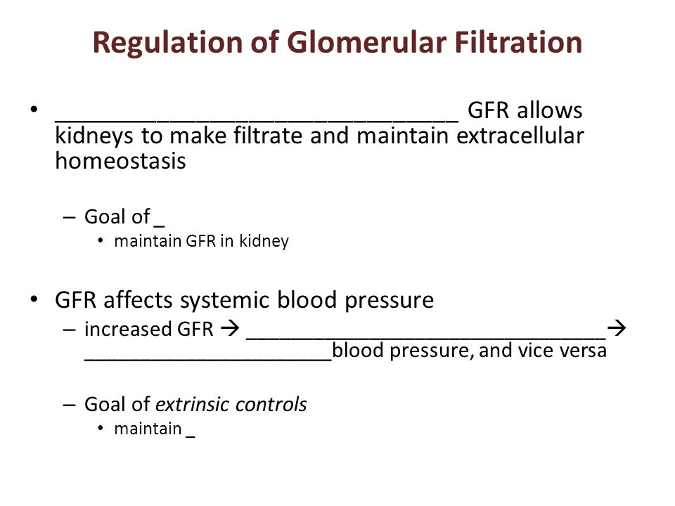 Regulation of Glomerular Filtration