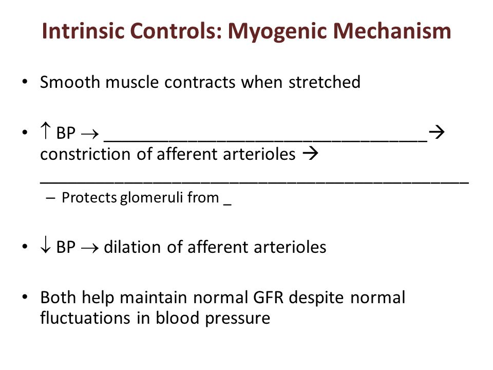 Intrinsic Controls: Myogenic Mechanism