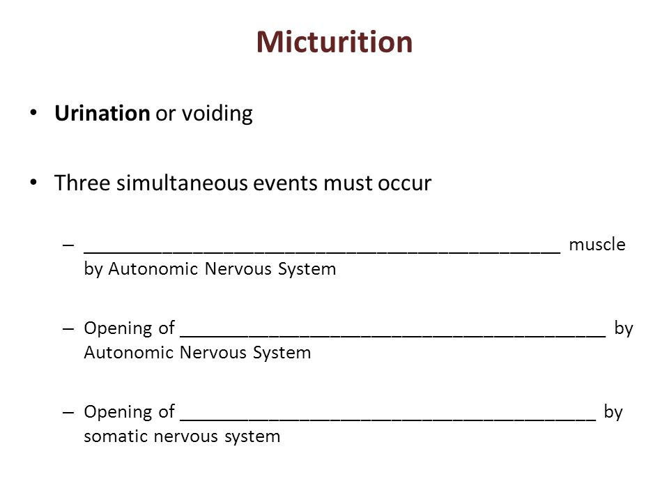 Micturition Urination or voiding Three simultaneous events must occur