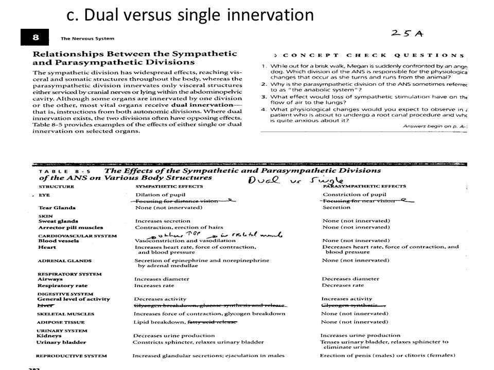 c. Dual versus single innervation