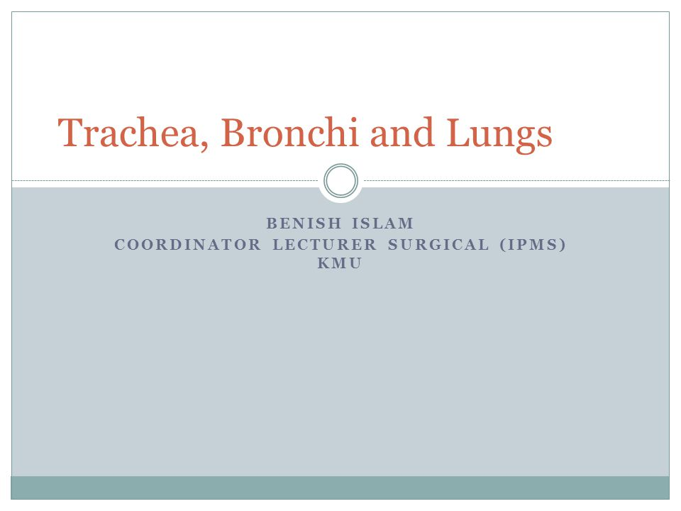 Trachea, Bronchi and Lungs