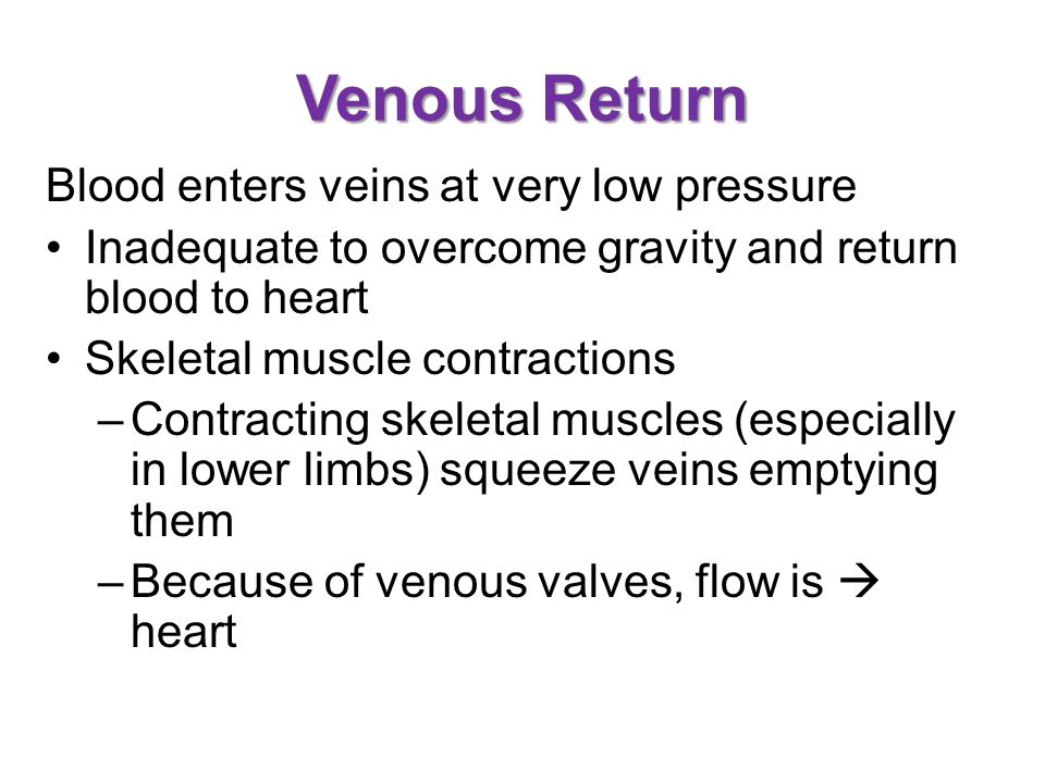 Venous Return Blood enters veins at very low pressure