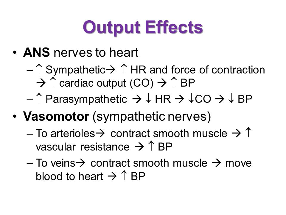 Output Effects ANS nerves to heart Vasomotor (sympathetic nerves)