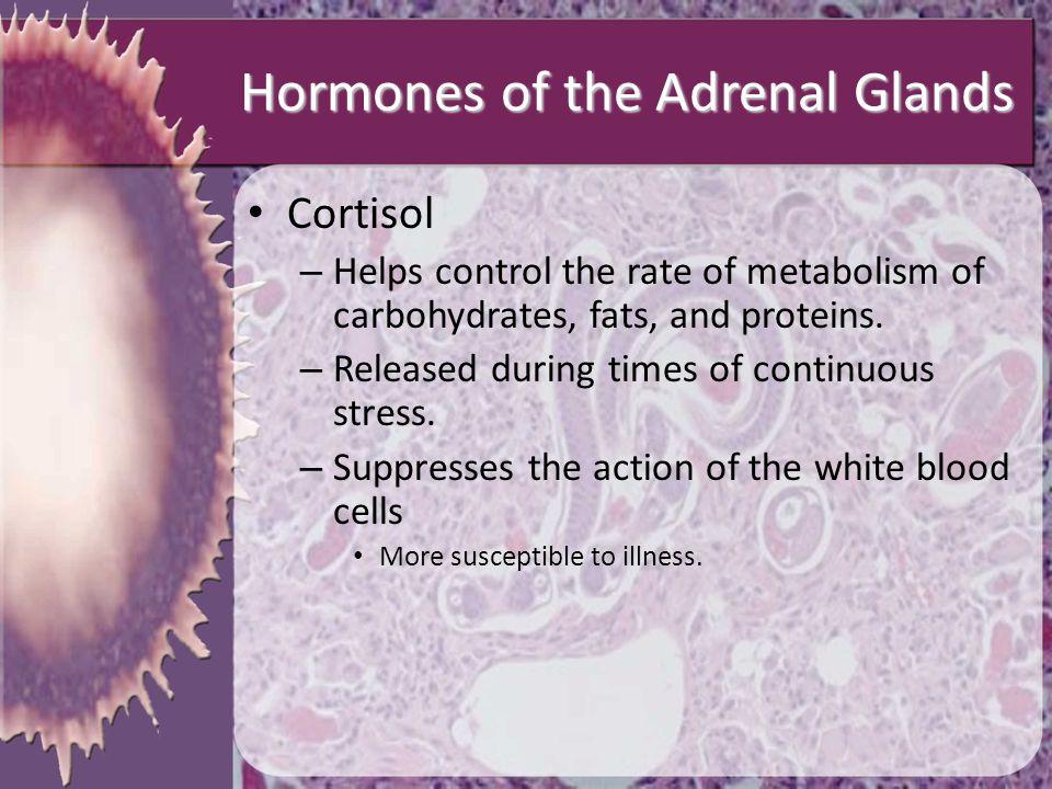 Hormones of the Adrenal Glands