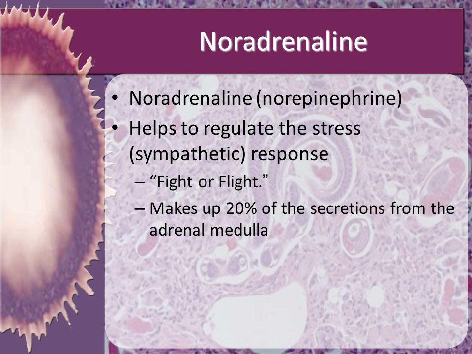 Noradrenaline Noradrenaline (norepinephrine)