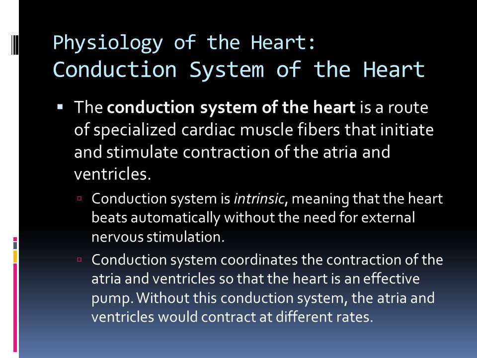 Physiology of the Heart: Conduction System of the Heart