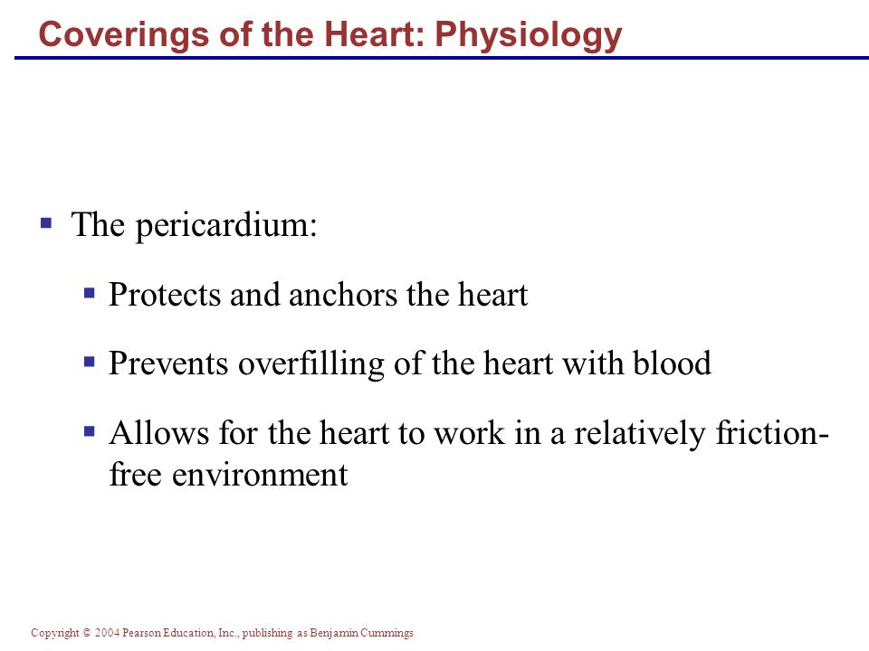 Coverings of the Heart: Physiology