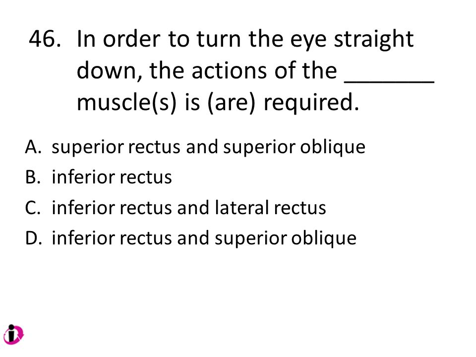 46. In order to turn the eye straight down, the actions of the _______ muscle(s) is (are) required.