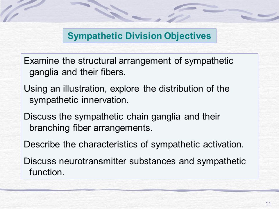 Sympathetic Division Objectives
