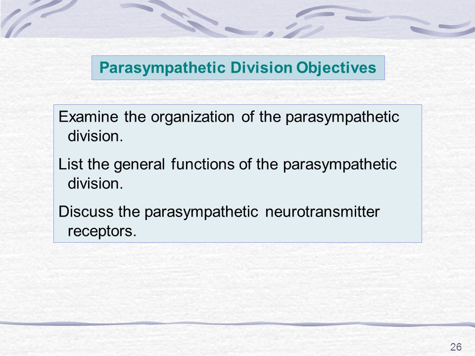 Parasympathetic Division Objectives