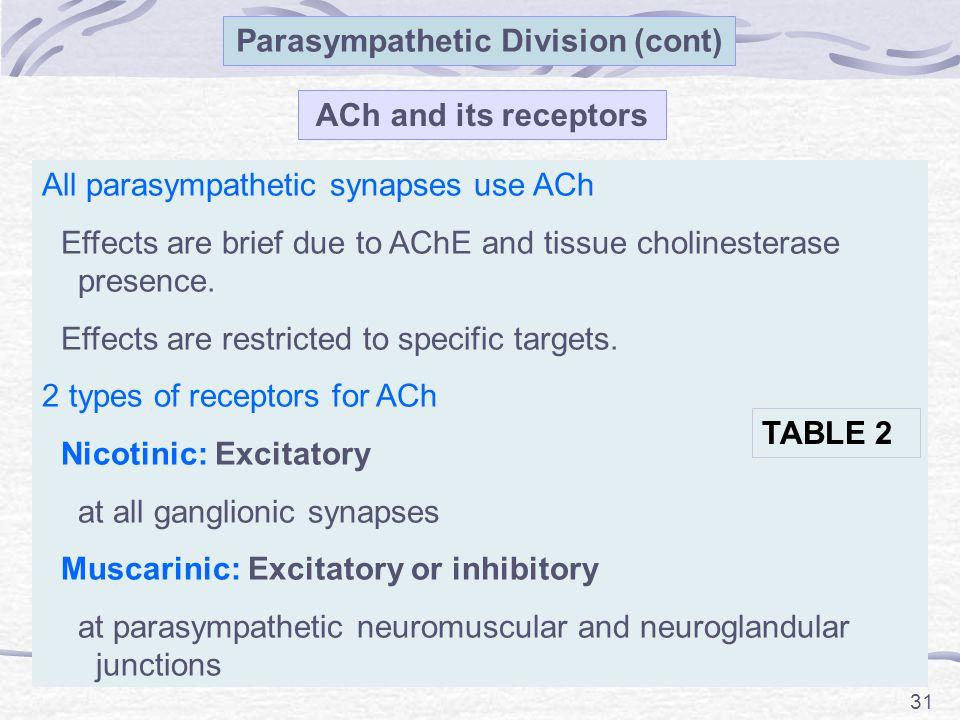 Parasympathetic Division (cont)