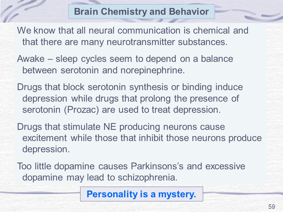 Brain Chemistry and Behavior Personality is a mystery.