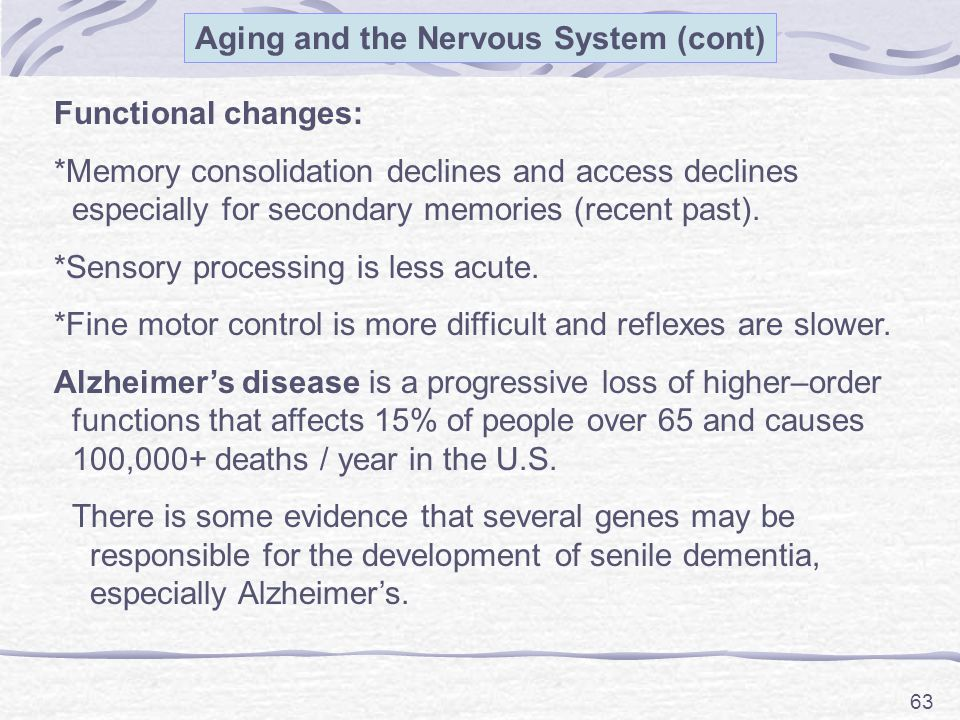 Aging and the Nervous System (cont)