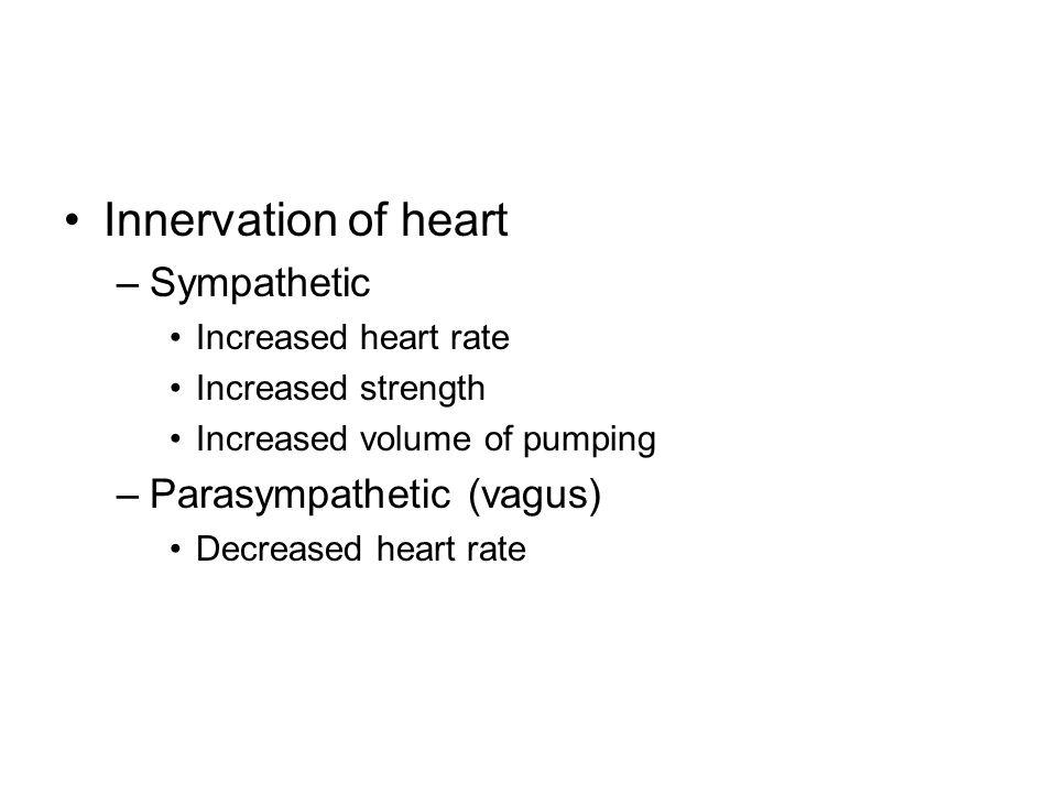 Innervation of heart Sympathetic Parasympathetic (vagus)
