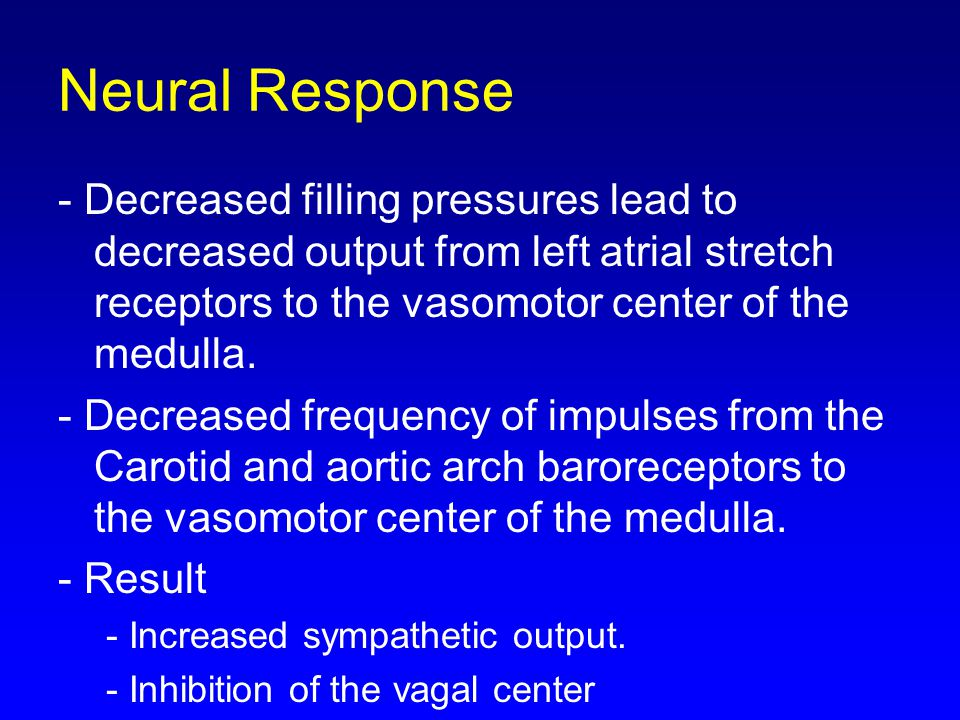 Neural Response - Decreased filling pressures lead to decreased output from left atrial stretch receptors to the vasomotor center of the medulla.