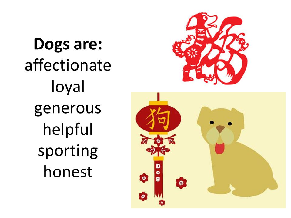 Dogs are: affectionate loyal generous helpful sporting honest