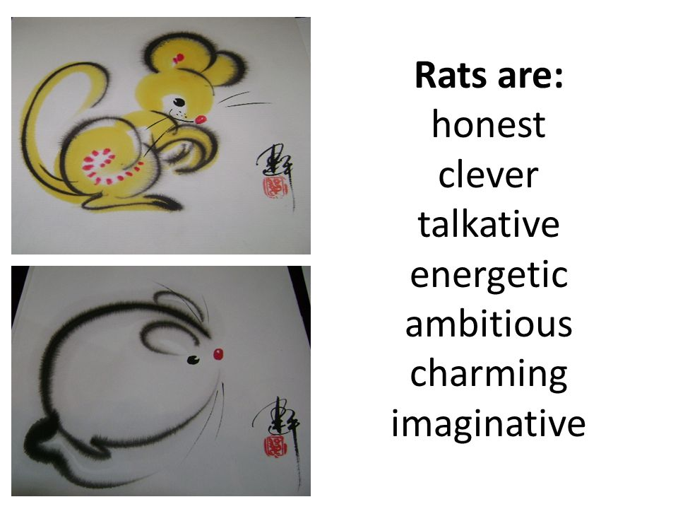 Rats are: honest clever talkative energetic ambitious charming imaginative
