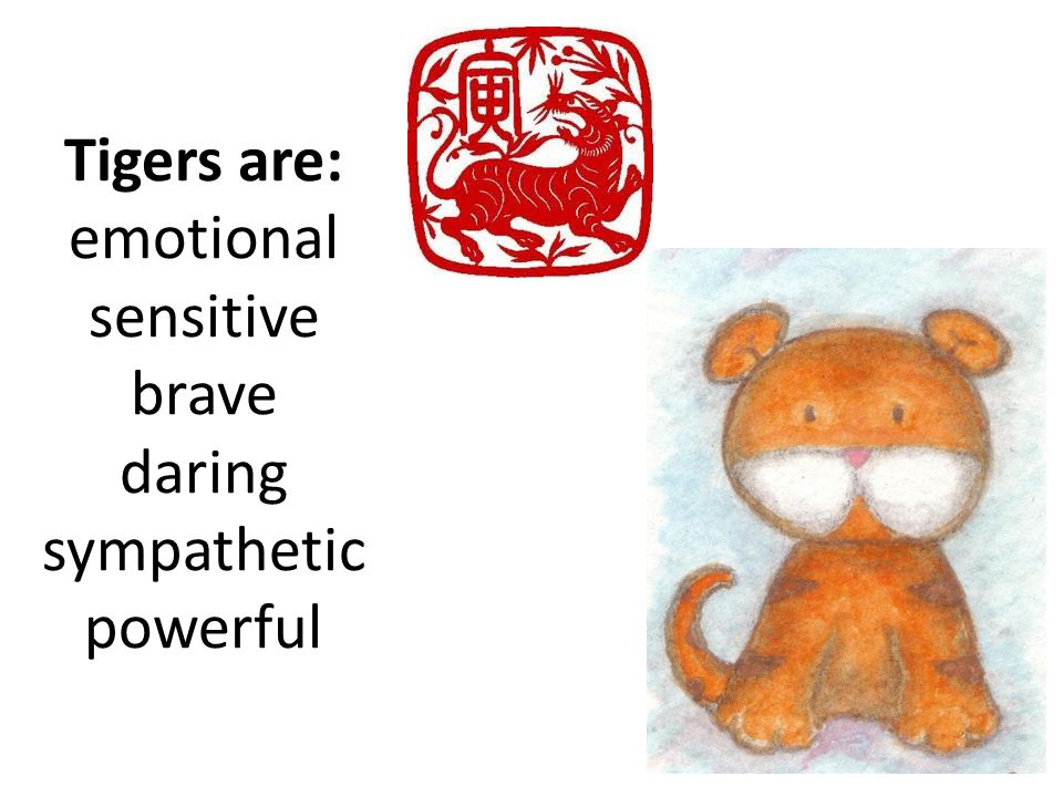 Tigers are: emotional sensitive brave daring sympathetic powerful