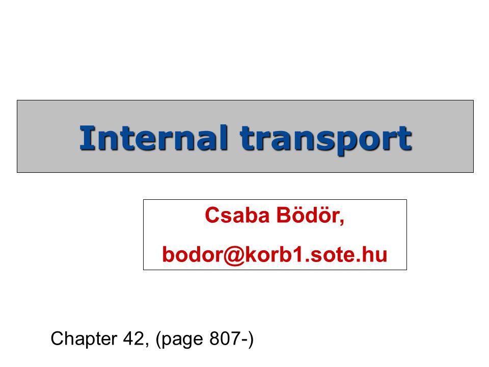 Internal transport Csaba Bödör, bodor@korb1.sote.hu