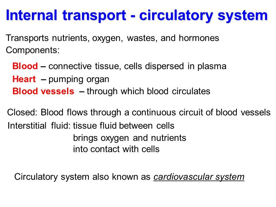 Internal transport - circulatory system