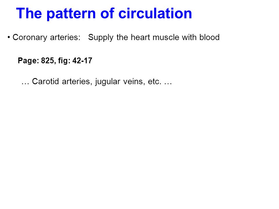 The pattern of circulation