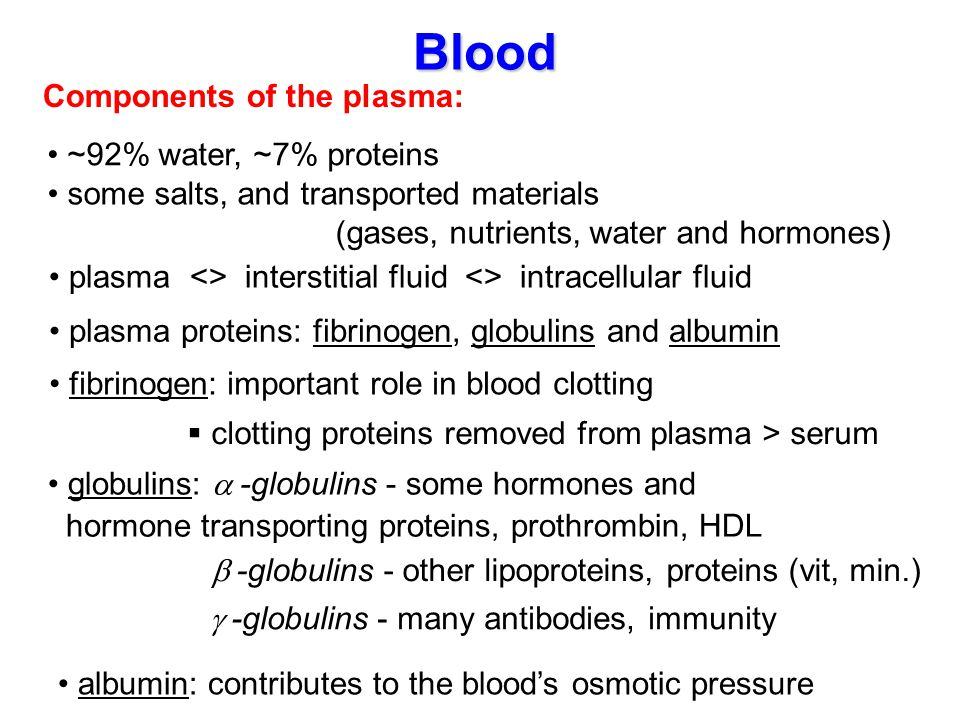 Blood Components of the plasma: ~92% water, ~7% proteins