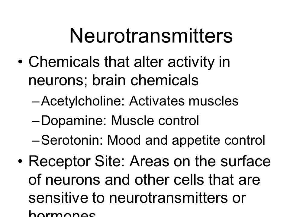Neurotransmitters Chemicals that alter activity in neurons; brain chemicals. Acetylcholine: Activates muscles.